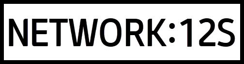 N12S Logo